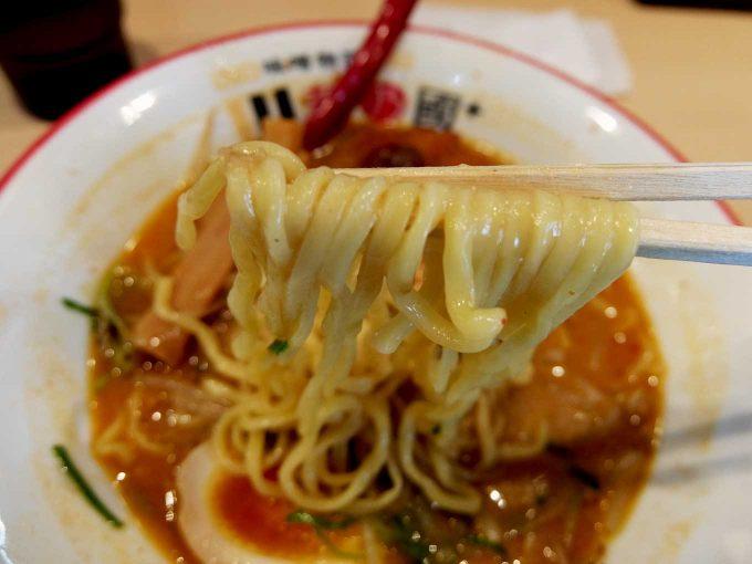 麺乃國+ 西天満店 北海道百年味噌カツラーメン 麺2 in 大阪 南森町